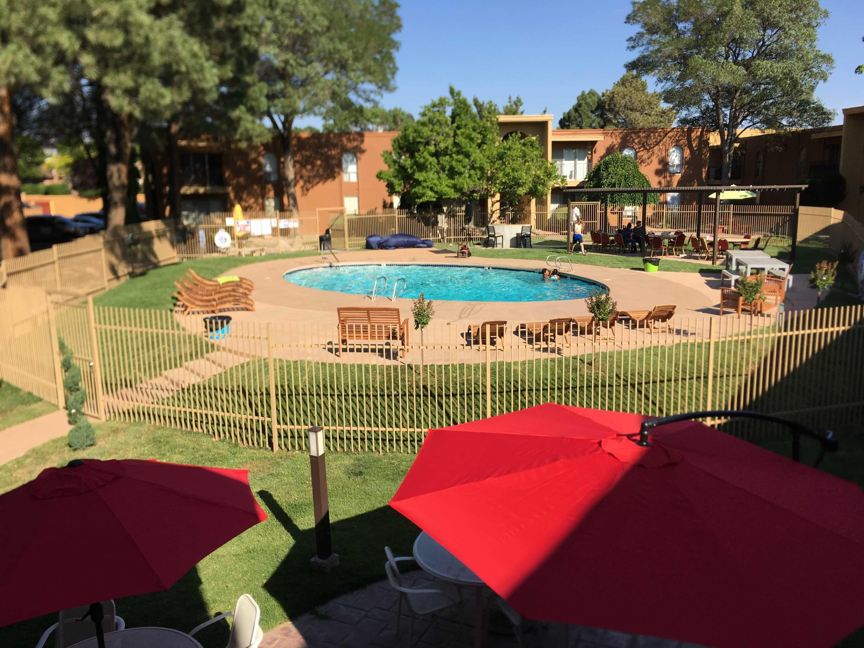 Albuquerque yard maintenance picture lawn maintenance for summer